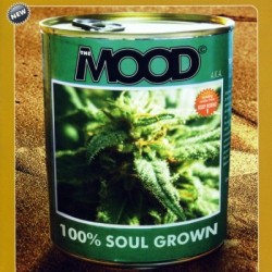 THE MOOD a.k.a. - 100% Soul Grown - CD