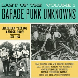V/A - Last Of The Garage Punk Unknowns Volume 1 - LP