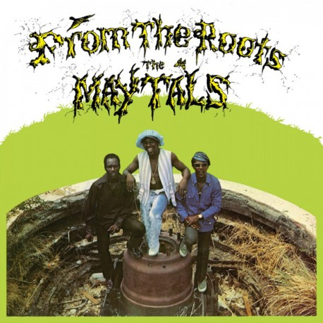 THE MAYTALS - From The Roots - LP