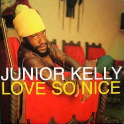 JUNIOR KELLY - Love So Nice - LP