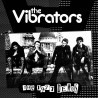 THE VIBRATORS: The 1977 Demos - LP