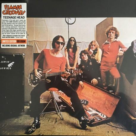 FLAMIN' GROOVIES - Teenage Head - LP