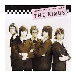 THE BIRDS - The Collector's Guide To Rare British Birds - CD